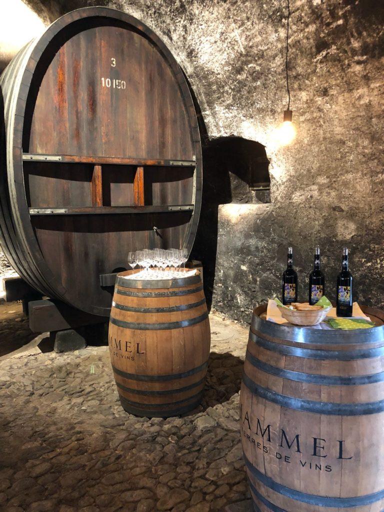 2018 04 30 PHOTO 00000126 768x1024 - Dégustation des vins du domaine possible dans les caves historiques du Château!