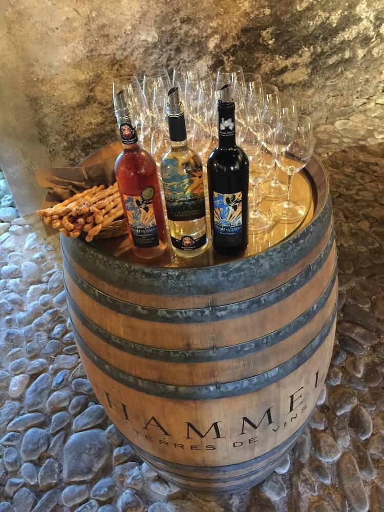 bouteilles vin chateau vullierens - Dégustation des vins du domaine possible dans les caves historiques du Château!