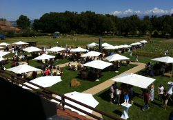 portesdesiris_gardenparty_suisse3
