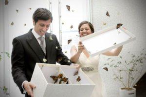 sortie-de-ceremonie-mariage-papillons