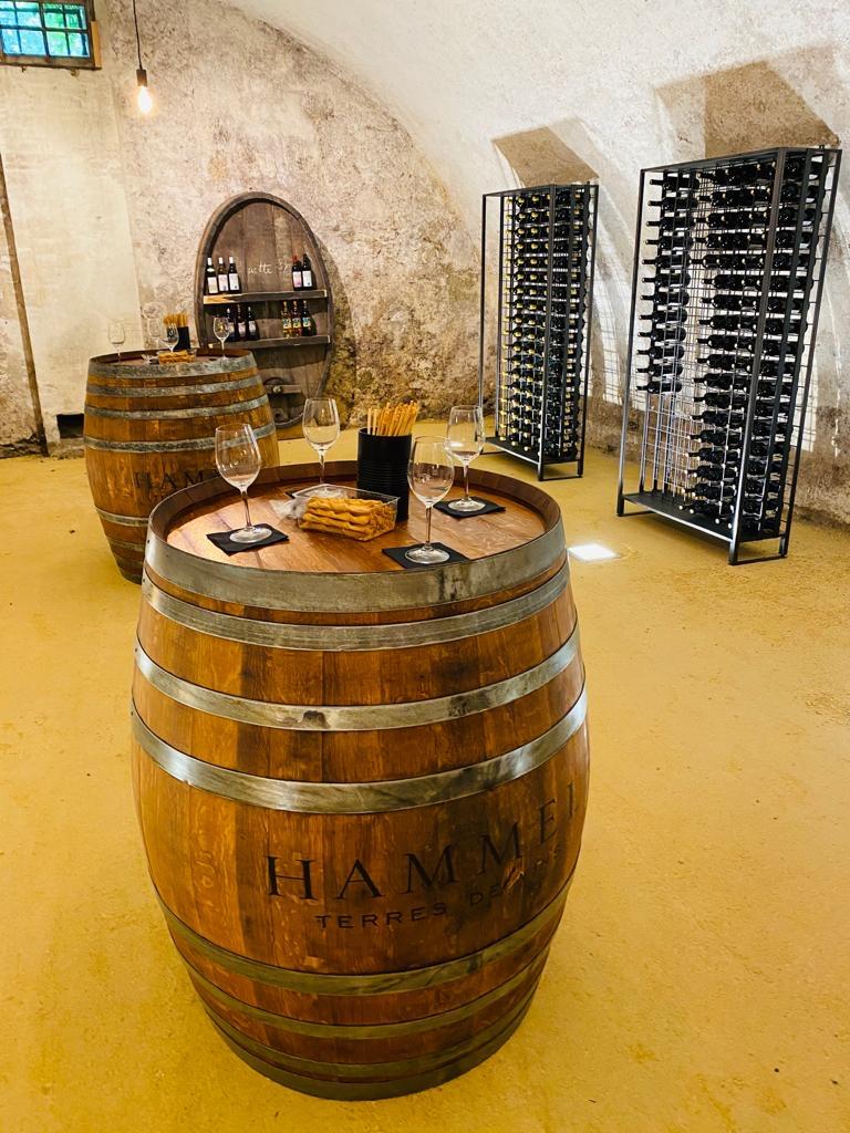 IMG 7225 - Dégustation des vins du domaine possible dans les caves historiques du Château!