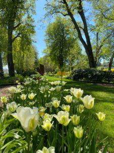 BLOG EARLY SPRING17 225x300 - 10 bonnes raisons de vous marier au printemps!
