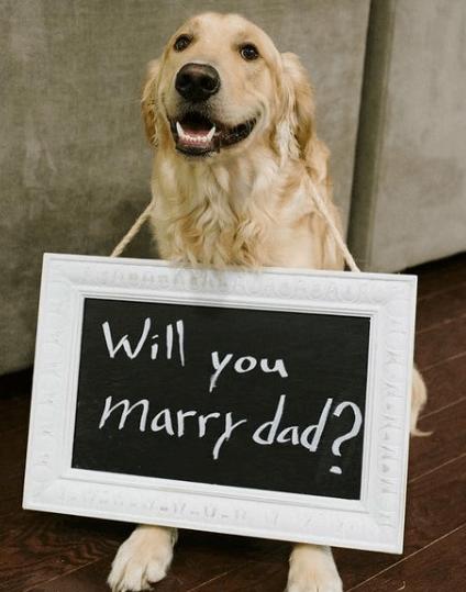 portes des iris article de blog demande de mariage 16 - Veux-tu m'épouser aux Portes des Iris?